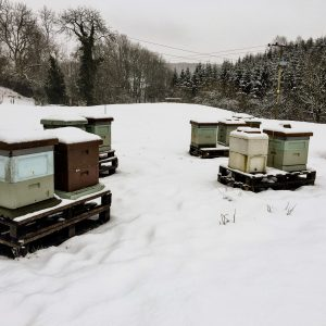South of scotland beekeepers - beehives in the snow