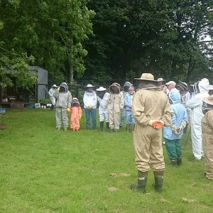South of scotland beekeepers - beekeeping group events