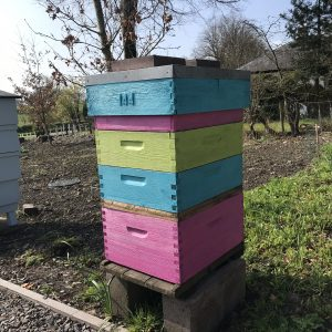 South of scotland beekeepers - brightly coloured beehive